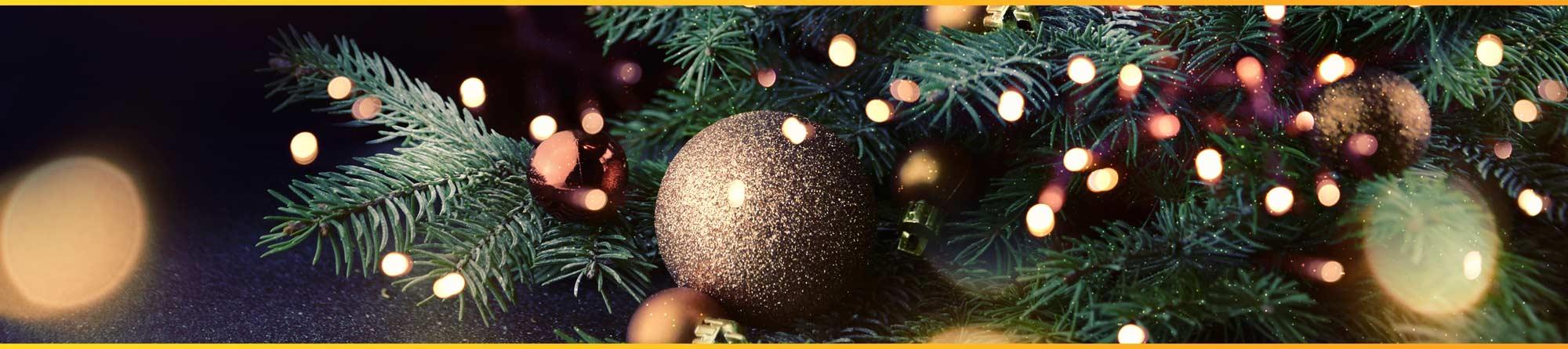 christmas club first florida credit union - Christmas Loans No Credit Check